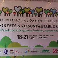Celebrating the International Day of Forests 2018
