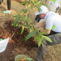 Tree planting at the International Day of Forest celebration 2015