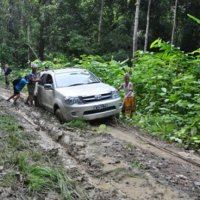 Off road - crossing the setulang forest