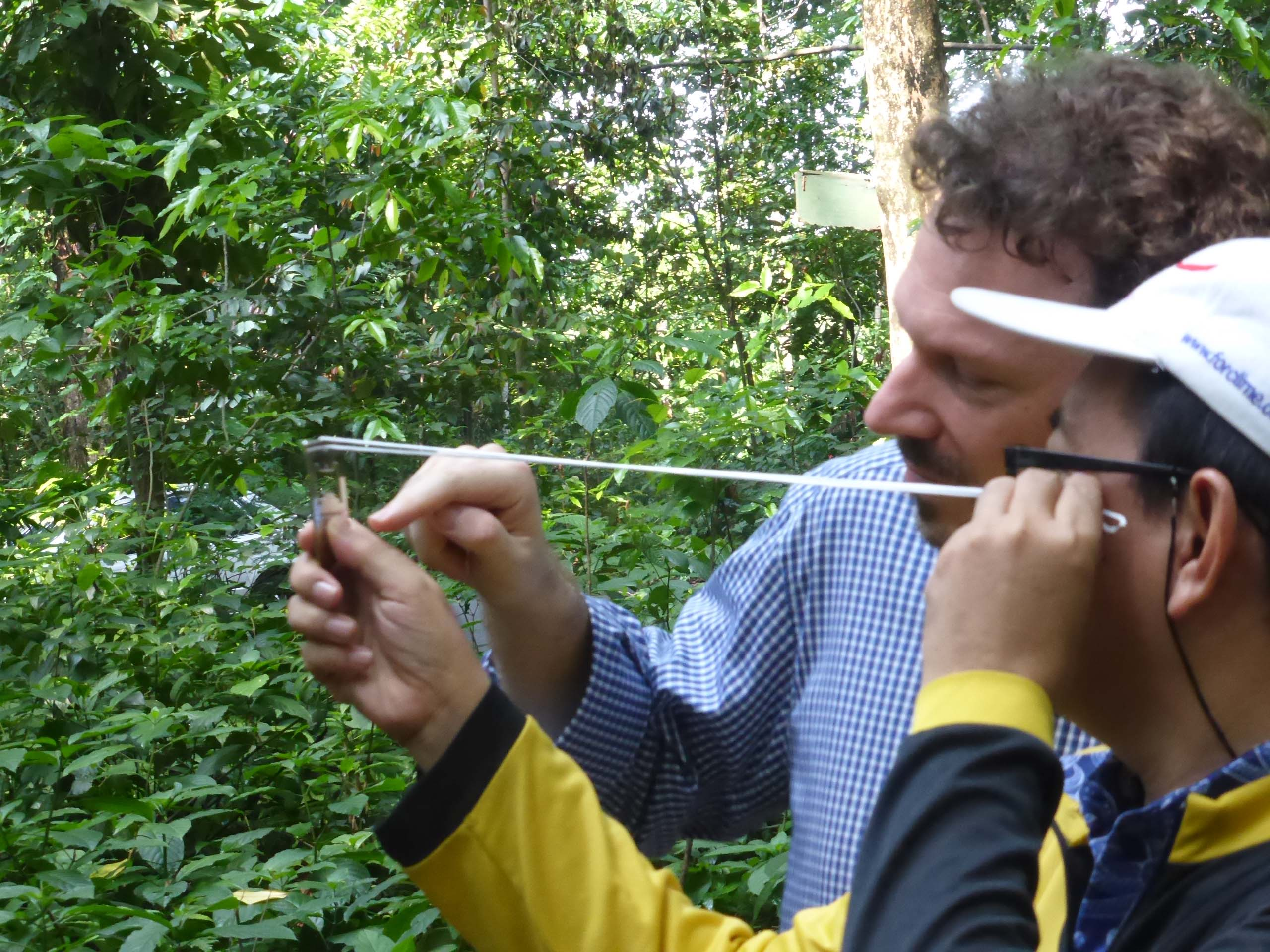 2015 forest inventory training Bogor FORCLIME