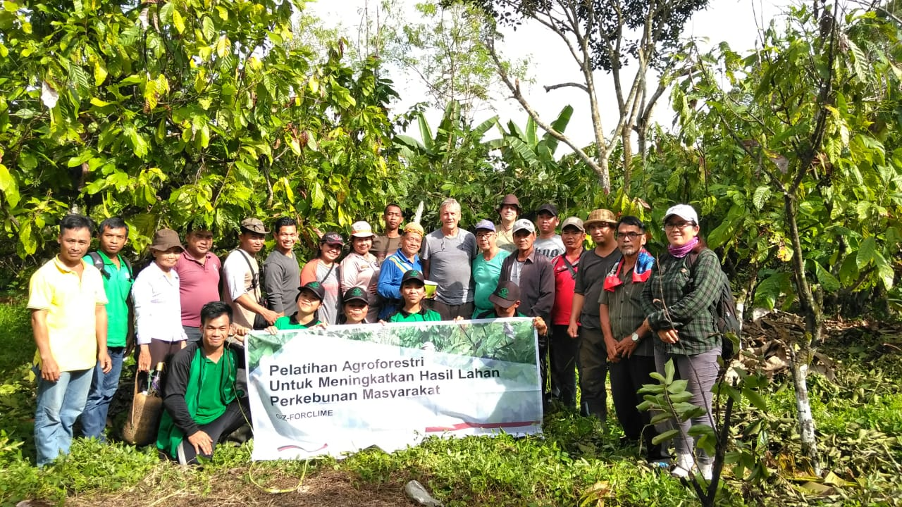 2019 08 19 agroforestry training Kapuas Hulu